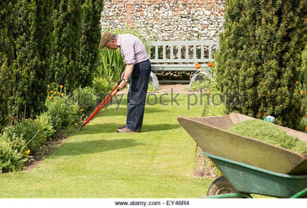 gardener-working-on-the-lawn-wyken-hall-gardens-suffolk-england-uk-ey46r4