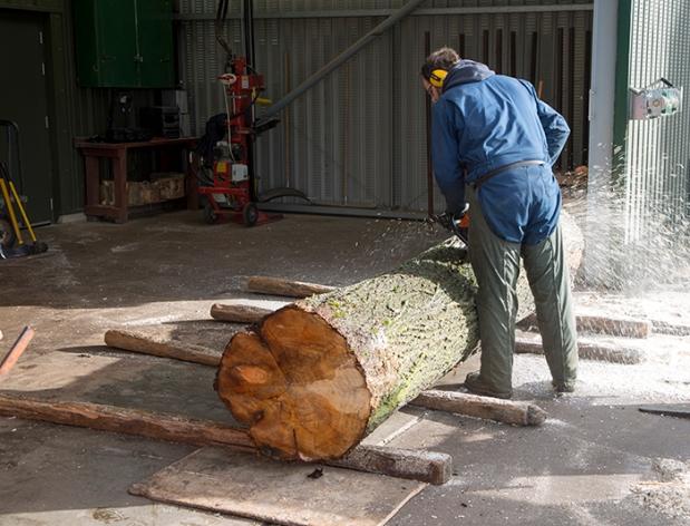 Salix Sawmill, Foskett Willows Ltd, Bromswell, Suffolk, England, Uk